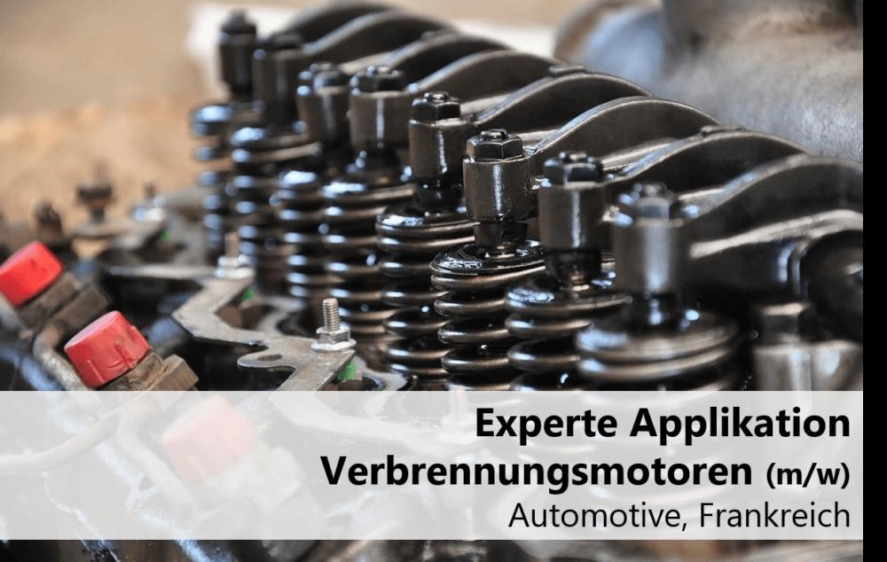 Experte Applikation Verbrennungsmotoren
